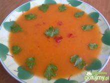 Chłodnik z pomidorów