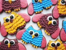 Ciasteczka zezowate sowy