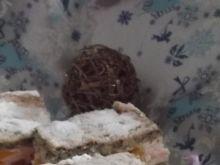 Ciasto brzoskwinka