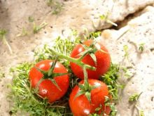 Co dają nam warzywa?