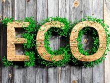 Co oznaczają podstawowe znaki eko? - infografika