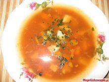delikatna zupka jarzynowa po staropolsku