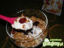 Deser z jogurtu, żurawin i musli