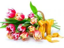 Drogie Panie - najlepsze życzenia na Dzień Kobiet!