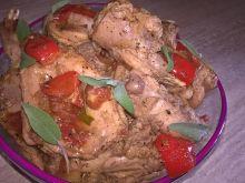 Duszony królik z papryką i pomidorami