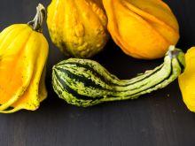 Warzywa dyniowate