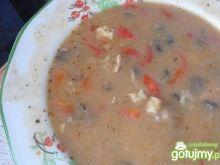 Dziwna zupa