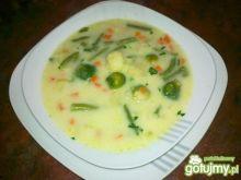 Expressowa zupa jarzynowa