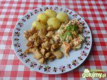 Filet z kurczaka w przyprawie do gyrosa