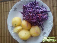 Fioletowa surówka obiadowa