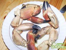 Gotowane szczypce kraba