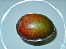 Historia i życie codzienne mango