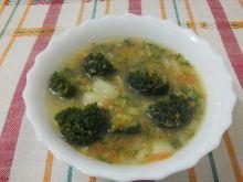 Hortexowa Zupa brokułowa