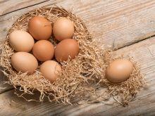 Jak kupić dobre jajka?