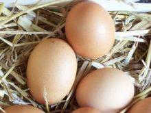 Jajka na wiele sposobów