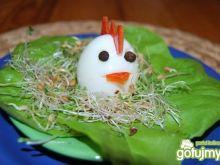 Jajko - kurczaczek
