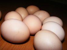 jajo  - aby nie pękało