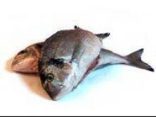 Jak kupić rybę mrożoną?
