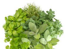 Jak najlepiej wykorzystać świeże zioła?