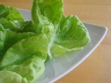 Jak ochodzić się z sałatą