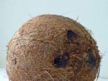 Jak rozłupać orzech kokosa?