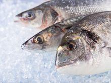 Jak rozmrozić rybę?
