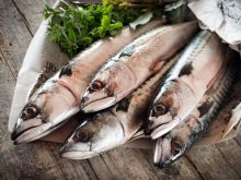 Jak rozpoznać świeżość ryby?