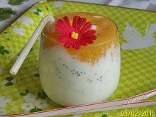 Jogurtowo- miodowy napój z pomarańczą
