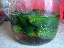 Kiszenie ogórków