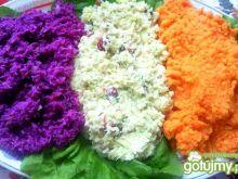 Kolorowy bukiet surówek
