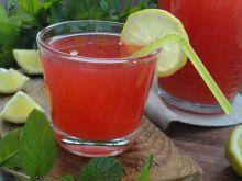 Kompot agrestowy z miętą i cytryną