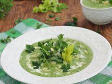 Krem z zielonych warzyw