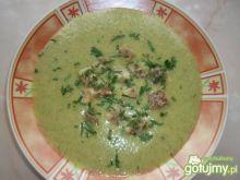 Krem zupa z selera naciowego