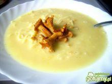 Kremowa zupa z kurek 4