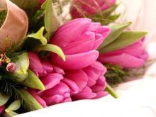 Kwiatów nie dam, mimo szczerych chęci