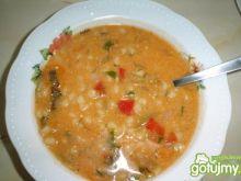 Lekko pomidorowa pudliszkowa