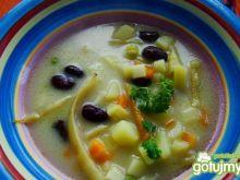 Lenia zupka fasolowa