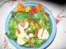 Letnia salatka z ogrodu babci Grazyny