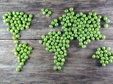 Kulinarna mapa świata
