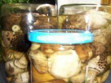 Marynowane grzybki łagodne