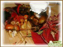 Maślaczki w zalewie z octem balsamicznym