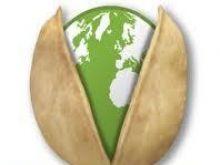 Międzynarodowy Dzień Pistacji