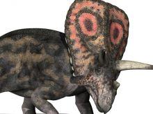 Mięso z którego dinozaura byłoby najsmaczniejsze?