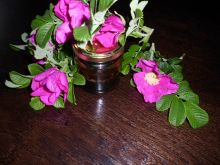 Miód różany na zimę - Warto zrobić choć jeden słoiczek na zimę