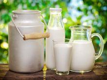 Mleko roślinne alternatywą dla mleka zwierzęcego
