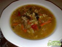 Moja chińska zupa z mięsem mielonym