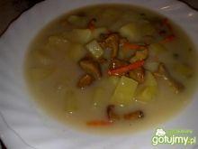 Moja zupa kurkowa z ziemniakami