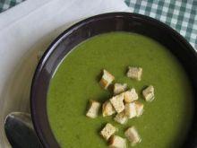 Moja zupa Shrek'a