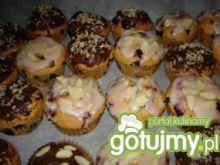 Muffinki - kolorowy zawrót głowy