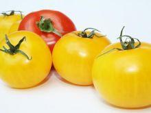 Najsmaczniejsze odmiany pomidorów.
